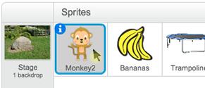 Der Affe wurde ausgewählt